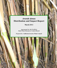 Arundo donax: Impacts and Distribution