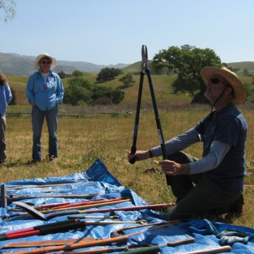 Cal-IPC Field course training weed tools demonstration