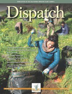 A woman pulls weeds on a hillside