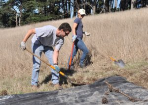 Habitat restoration projects are made possible through member support.