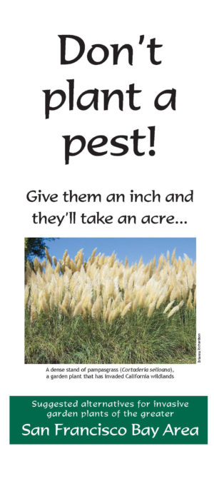Don't Plant a Pest Brochure: BayArea