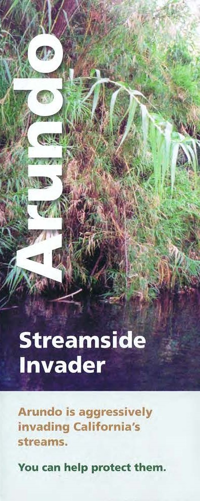 Arundo streamside invader brochure