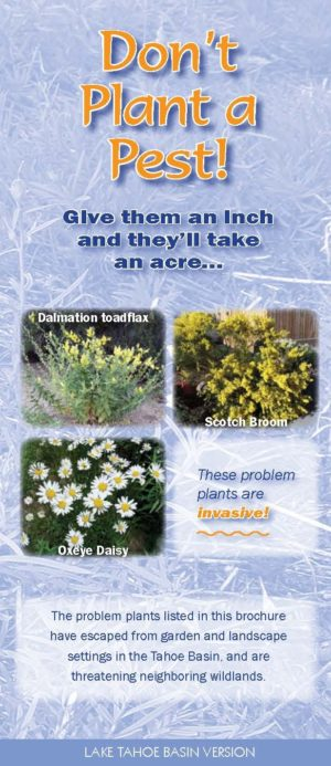Don't Plant a Pest Lake Tahoe Basin brochure
