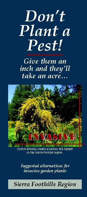 Don't Plant a Pest Sierra Foothills brochure cover