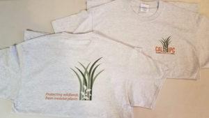 Cal-IPC tshirt light gray 2016