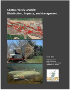 Cover image of 2020 Central Valley Arundo Report