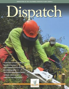 Newsletter cover with two people using chainsaws and large clippers to cut woody plants