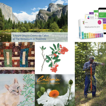 grouped images of Yosemite, watercolor paintings of flowers, genetic test kit,