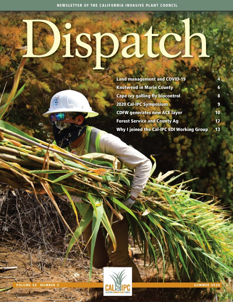 Magazine cover with worker in hard hat and bandana facecover hauling armfuls of Arundo