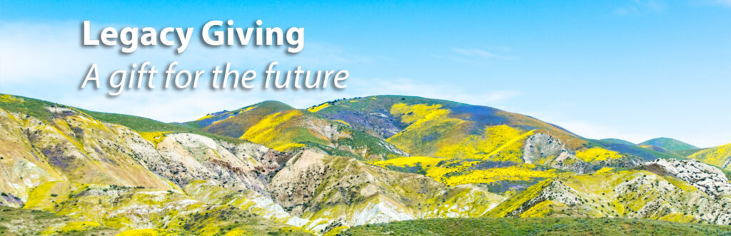 rolling hills covered in yellow and blue flowers under a blue sky with text Legacy Giving a gift for the future