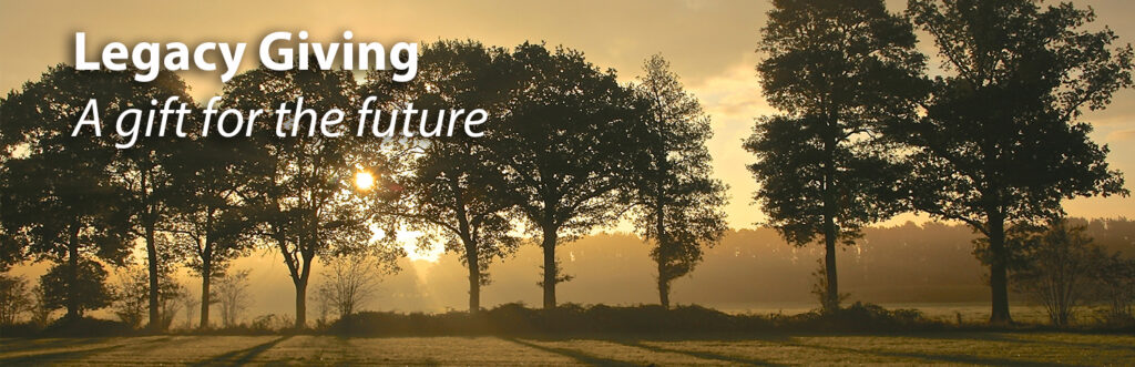 A row of trees in a green field silhouetted by setting sun with title text Legacy Giving A gift for the future