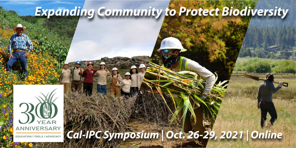 """Composite image of a man in standing in a field of poppies, a mixed group of people in hardhats stand proudly atop a large brown pile of cut Arundo, a man in a hard hat and face mask hauling a load of Arundo, and a woman with a shovel over her shoulder walking through a field. Text overlay reads """"Cal-IPC 30-Year Anniversary: Expanding Community to Protect Biodiversity, 2021 Cal-IPC Symposium, Oct. 26-29, Online"""""""
