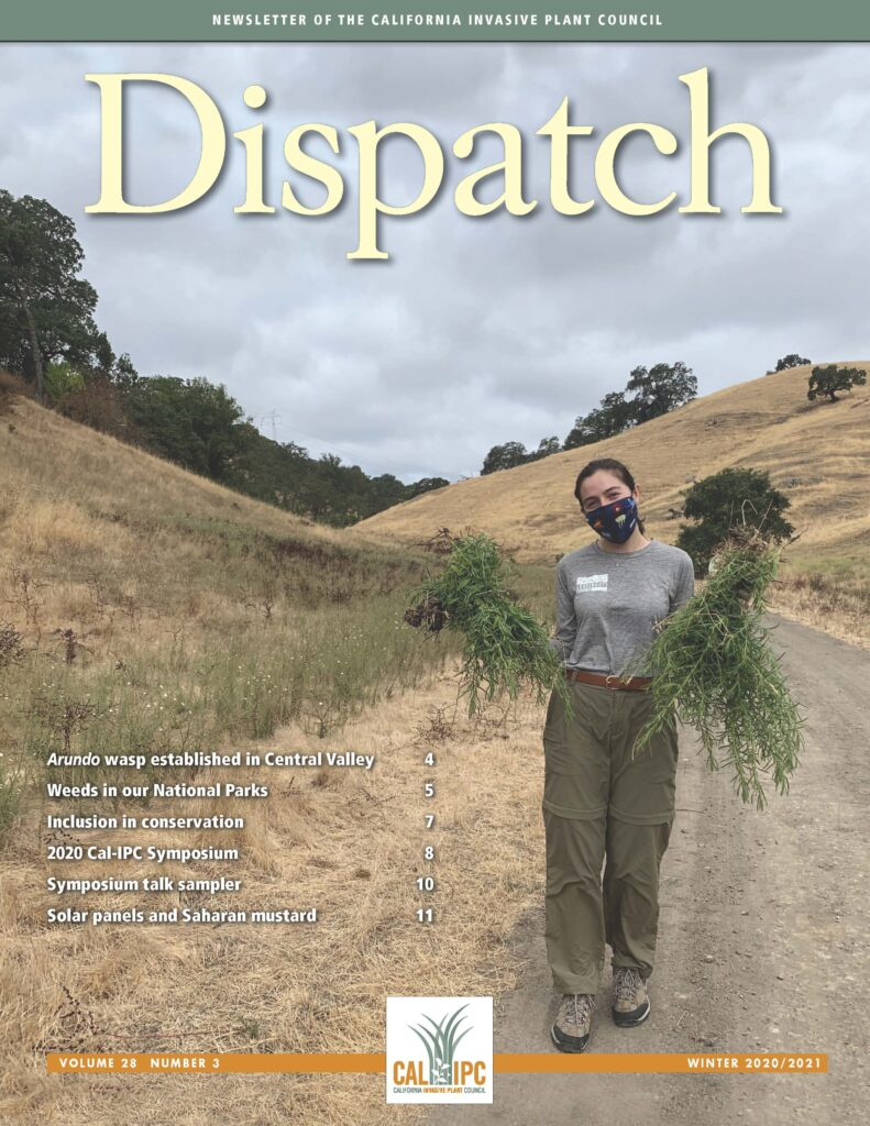 Newsletter cover image with a photo of a young woman in a face mask carrying armfuls of green weeds in a brown hilly landscape.
