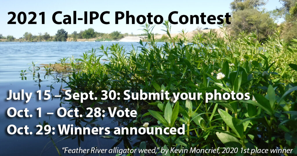Image of Alligator Weed invading a riverway with text inviting people to enter the 2021 Photo Contest
